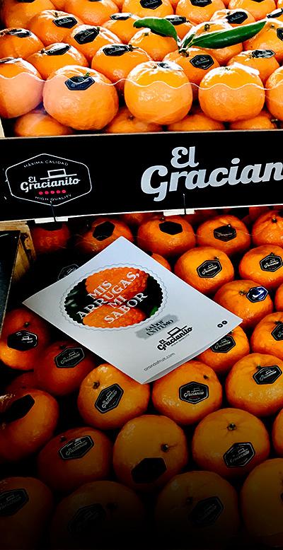 naranjas-mandarinas-gracianito-sevilla-tocina